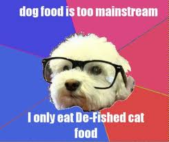 hipster dogfood